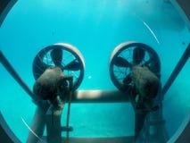 Hélices sob a água Imagem de Stock Royalty Free