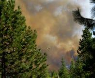 Hélicoptère avec le seau au feu de Bass Lake Photos libres de droits