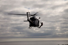 Hélicoptère de griffon Photographie stock libre de droits