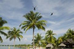 Hélicoptères américains volant au-dessus de la plage Photo libre de droits