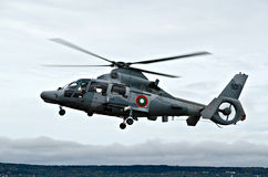 Hélicoptères de panthère Photos stock