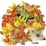 Hérisson animal de forêt, feuilles colorées fond, fruit, baies, champignons, feuilles jaunes, cynorrhodons de nature d'automne su illustration de vecteur
