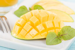 Hérisson de mangue Photographie stock