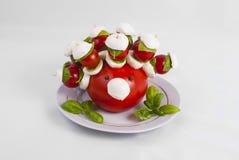 Hérisson de tomate Photographie stock libre de droits