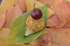 Hérissons ambres Photographie stock libre de droits