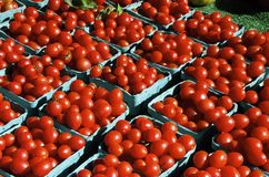Héritage Cherry Tomatoes images libres de droits