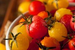 Héritage organique Cherry Tomatos photographie stock libre de droits