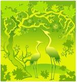 Hérons en vert Image stock