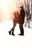 Hétérosexuel de couples l'hiver de rue image stock
