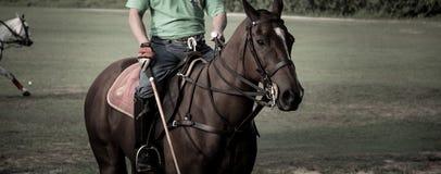 Hóquei asiático do POLO em cavalos Foto de Stock