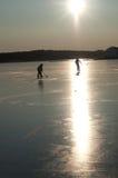 Hóquei de gelo Fotos de Stock Royalty Free