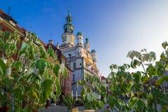 Hôtel de ville de Poznan par derrière les feuilles sur le vieux marché image libre de droits