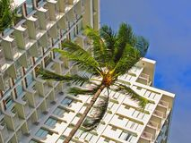 Hôtel tropical photos libres de droits