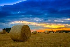 hö för fält för baldagslut över Fotografering för Bildbyråer