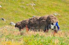 Hö som staplas på lastbilen Royaltyfria Bilder