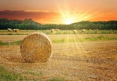 Höbaler i den sceniska solnedgången royaltyfria foton