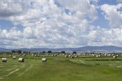 Höbaler i ett fält med molnig himmel Arkivbilder