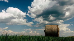 Höbaler i ett fält på en molnig sommardag Arkivfoto