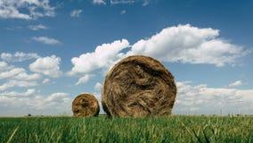Höbaler i ett fält på en molnig sommardag Arkivbild