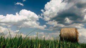 Höbaler i ett fält på en molnig sommardag Royaltyfri Bild