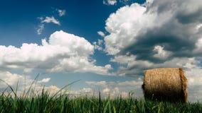 Höbaler i ett fält på en molnig sommardag Arkivfoton
