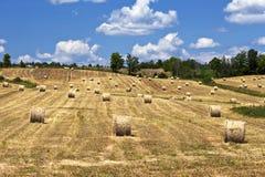Höbaler i fält på en solig dag Arkivbilder