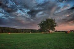 Höbaler och ensamt träd på en äng mot härlig himmel med moln i solnedgång Arkivfoton