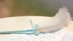 Höckerschwanfederkiel, verziert mit dem Zertifikat des blauen Bandes und der Hochzeit, das auf Tabelle legt stock video