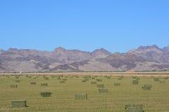 Höfält längs den Arizona Kalifornien gränsen September 2016 Arkivfoto