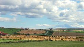 Höfält på en lantgård i England, UK Arkivbild