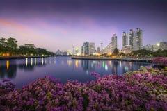 Hög affärsbyggnad bak floden i parkera på den härliga natten Bangkok Thailand Royaltyfria Bilder