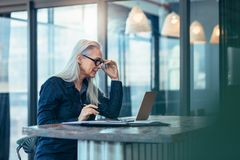 Hög affärskvinna som i regeringsställning arbetar på bärbara datorn arkivfoton