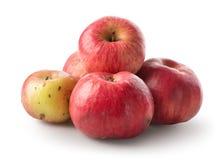 Hög av äpplen Arkivfoto