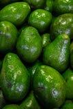Hög av avokadon på marknaden för bonde` s arkivbilder