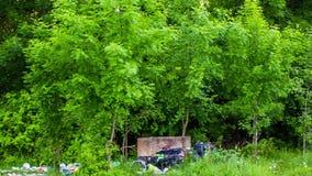 Hög av avskräde på gräs i grön skog arkivfilmer