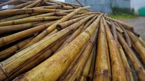 Hög av bambu som lägger över de royaltyfri bild