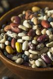 Hög av blandade blandade organiska torra bönor Royaltyfria Bilder