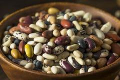 Hög av blandade blandade organiska torra bönor Royaltyfri Fotografi