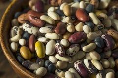 Hög av blandade blandade organiska torra bönor Arkivbilder