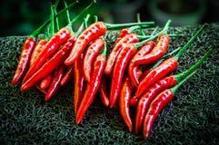 Hög av chilibakgrund Royaltyfri Fotografi