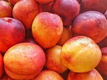 Hög av den läckra gula apelsinen och röda nektariner Royaltyfria Foton