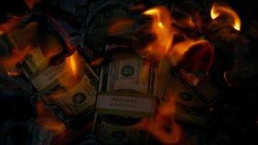 Hög av dollar på brand stock video