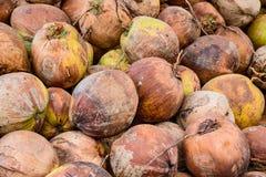 Hög av gamla kokosnötter på jordningen, Thailand Arkivbild