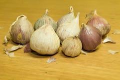 Hög av garlics Royaltyfri Fotografi