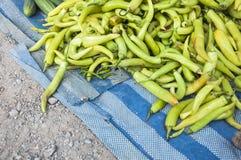 Hög av grön Chilipeppar Arkivbilder
