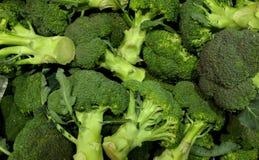 Hög av grön ny broccoli royaltyfri fotografi