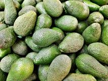 Hög av av gröna avokadon arkivbild