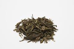 Hög av gröna teblad - Kina Qi Shan Mao Jin Royaltyfria Foton