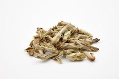 Hög av gröna teblad - Kina Ya Bao Arkivfoton