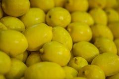 Hög av gul citronfrukt Arkivfoton